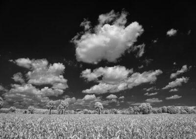Infrarosso paesaggio agricolo Cesare Re