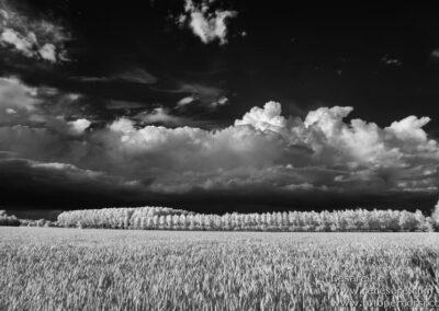 Infrarosso paesaggio campi agricoli