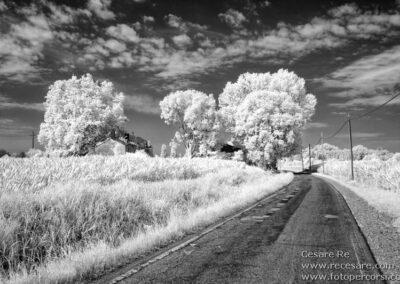 Infrarosso strada campi frumento
