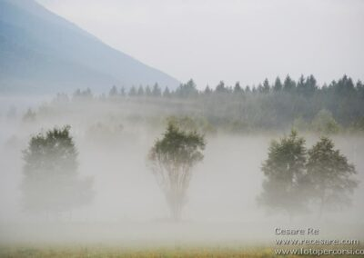 nebbia valle vigezzo valle ossola