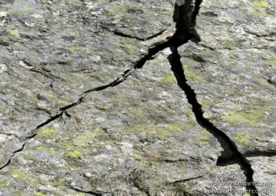 texture roccia cesare re