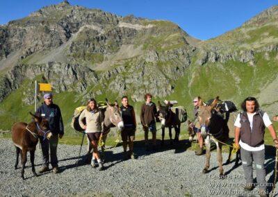 Trekking con asini valle aosta